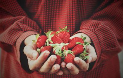 hand full of strawberries